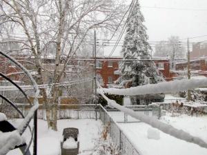 Frío de Montreal
